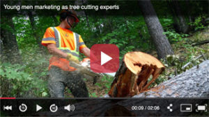 MJ Enright & Sons Tree Service, Ontario, Ottawa